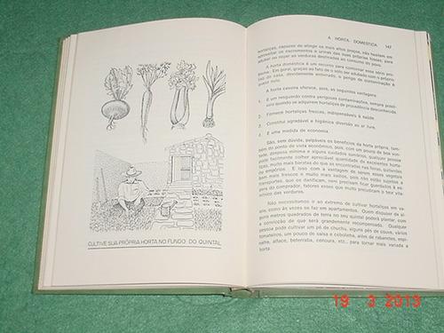 * as hortaliças na medicina doméstica - ilustrado *