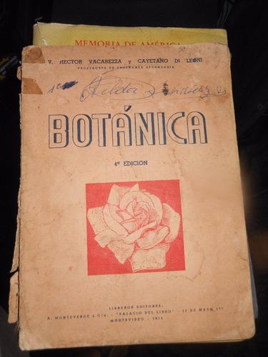 * botanica -   vacarezza - di leoni -