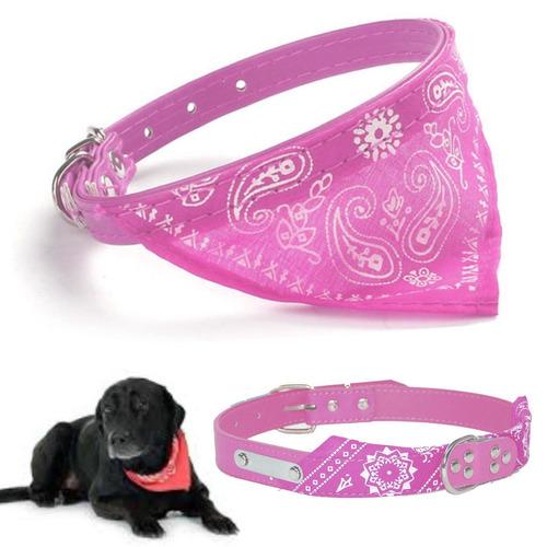 ¡ collar pañoleta grande mascota correa y bandana rosado !!