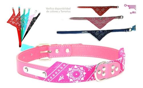 ¡ collar pañoleta mediano rosado mascota correa y bandana !!
