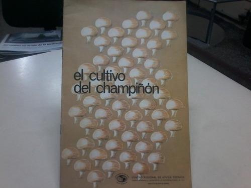 ----el cultivo del champignon en los estados unidos méxico-
