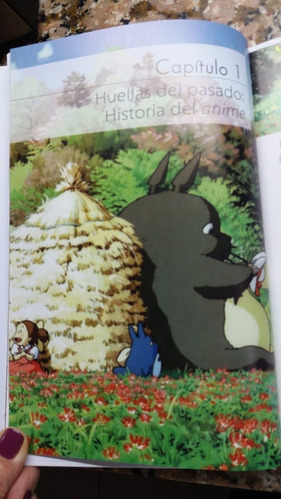 * el mundo invisible de hayao miyazaki * laura montero plata