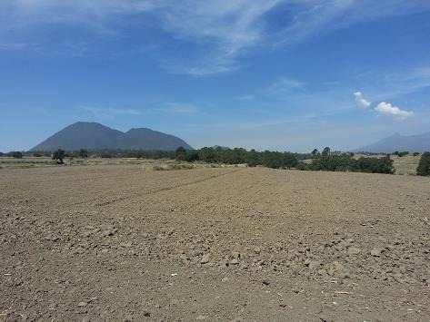 ¡¡ excelente terreno de 289 hectareas a 11km de audi en citlaltepetl puebla !!