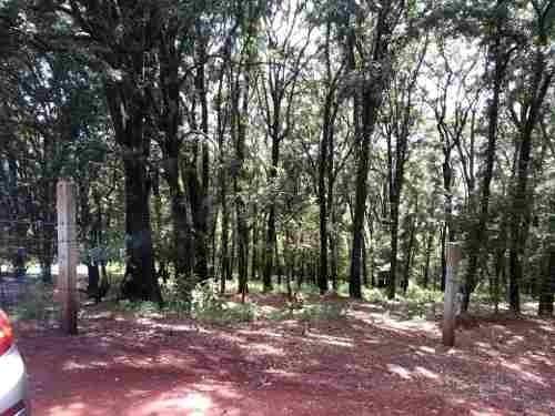¡ hermoso terreno boscoso !