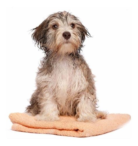 ¡ toalla microfibra ultra absorbente para baño de mascota !!