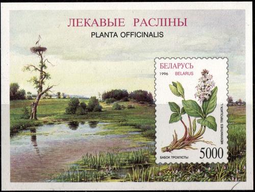 0063 flor pantano belarus hoja recuerdo 5000 mint n h 1996