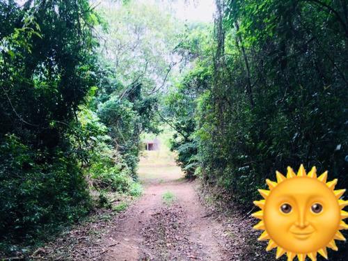 01-lotes demarcados com trilha ecologica confira !