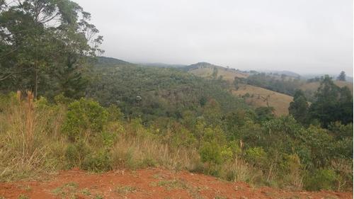 03a terreno com area verde
