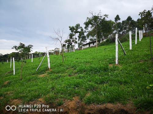 06 c- terreno aceito contra proposta