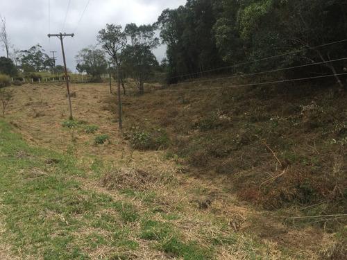 06 terras boa pra plantação