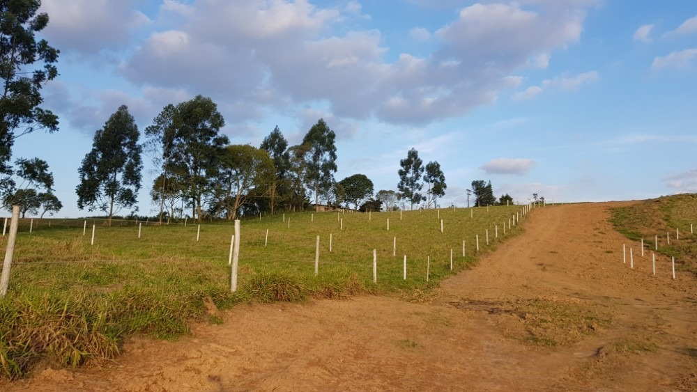 06-terreno fazendas e sítios