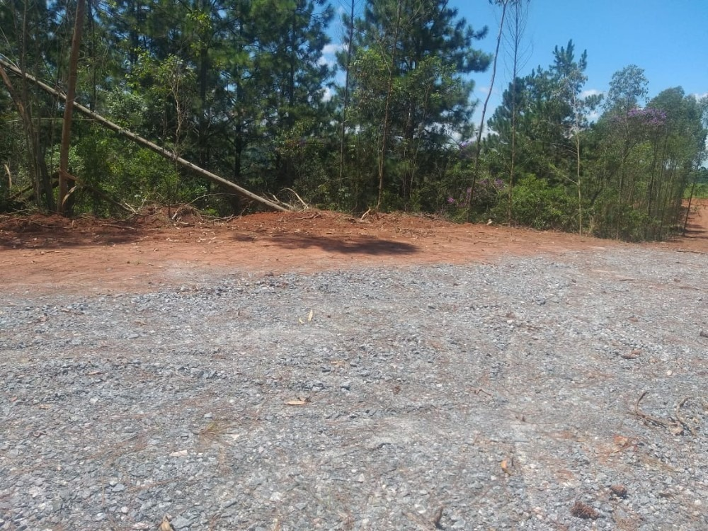 06b-terreno já cercado e limpo
