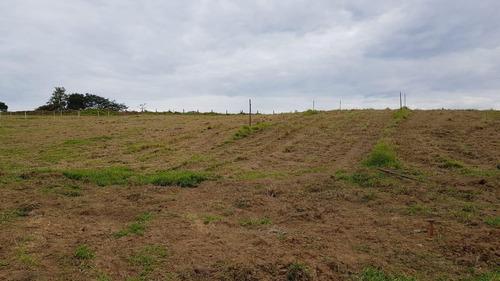 06c- excelente terreno de 1.000 m2 aceito troca