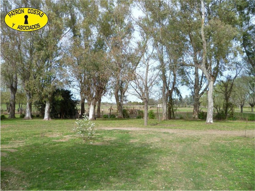 0976hp- 83 ha (52 ha + 31 ha) - open door-manzanares