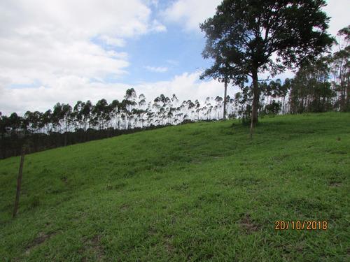 09b  terrenos com ótima vista
