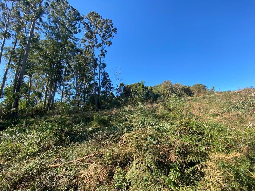 09d terreno com ótima topografia
