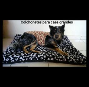 82fbccee1a Colchonete Cachorro Grande Porte - Camas para Cachorros no Mercado ...