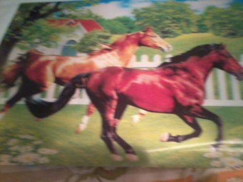 1 foto 25x35 motivo que aparece dois cavalos importado