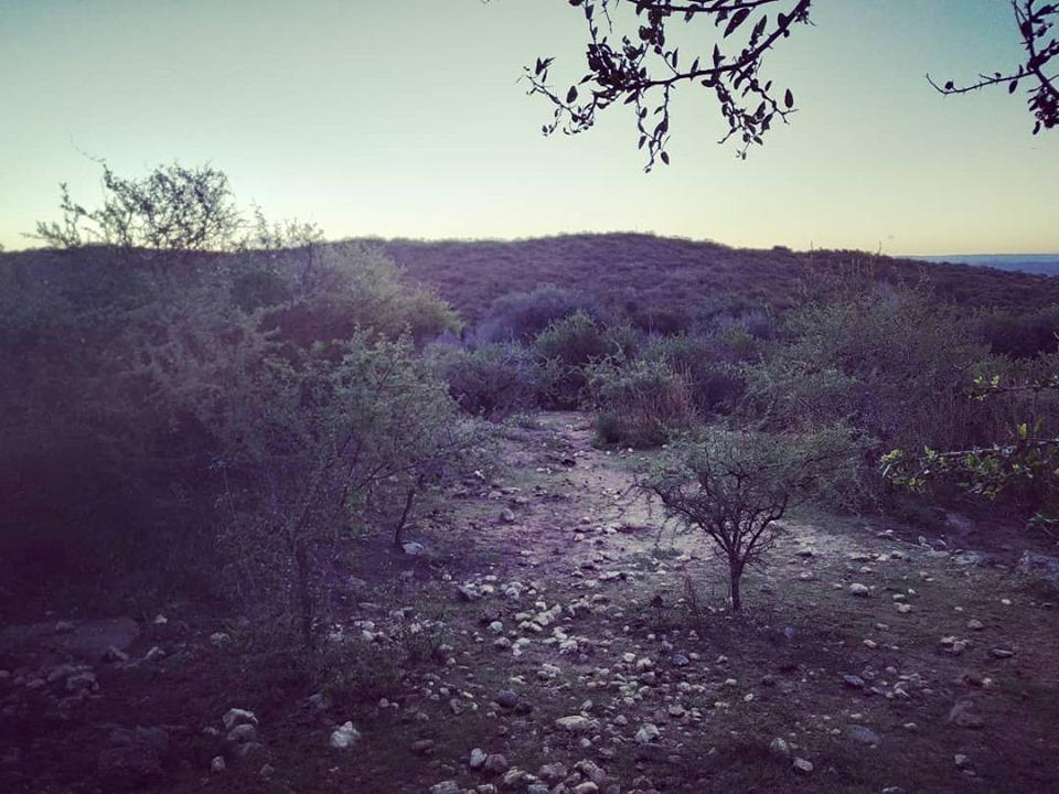 1 hectarea en san antonio de arredondo, cordoba
