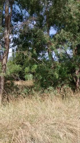 1 hectarea en san miguel del monte