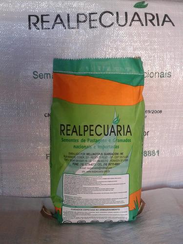 1 kg de sementes amendoim forrageiro ( frete grátis )