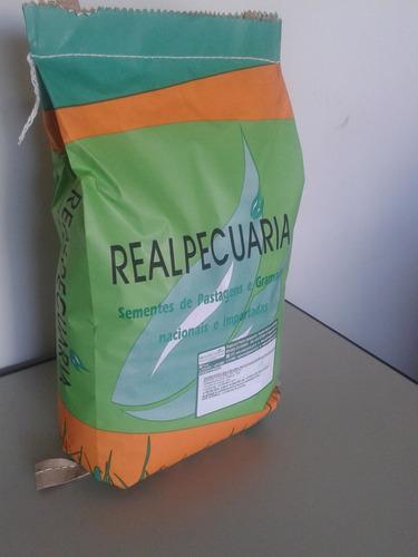 1 kg de sementes de grama batatais (rende 100 a 150 m2)