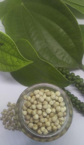 1 kg tempero pimenta do reino branca em pó moída iguaria