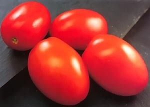 1 lb de semillas de solanum lycopersicum - rio grande 432-a