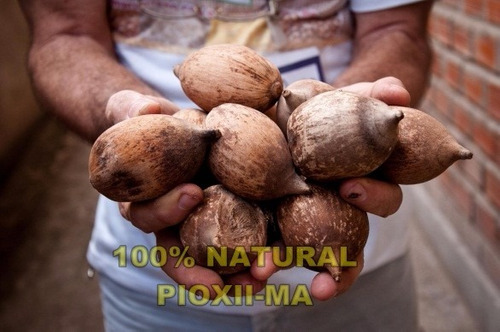 1 litros azeite/óleo comestível de coco babaçu 100% natural