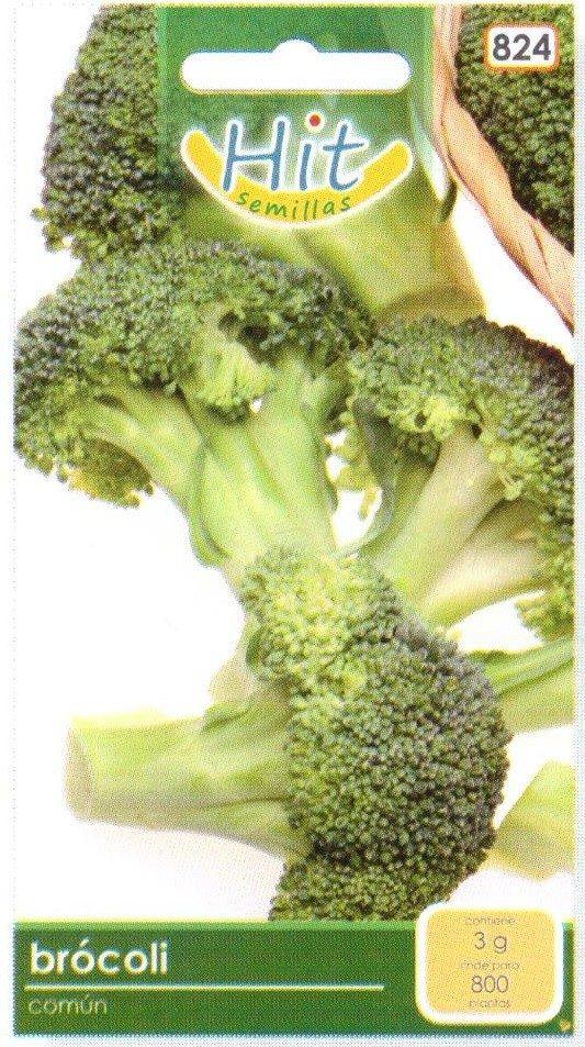 1 sobre de semilla de brocoli comun en mercado for Semillas de cactus chile