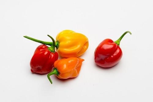1 sobre de  semilla de chile habanero (naranja y rojo)