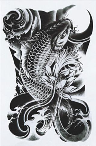 1 Tatuagem Temporaria 17x11cm Carpa Oriental Nº 6 R 25 00 Em