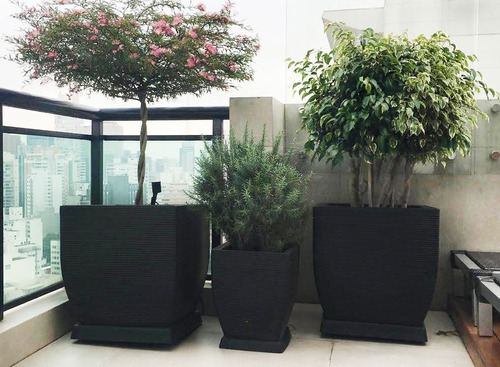 1 vaso de planta folhagens carnivoras arbustos erva t 45x35