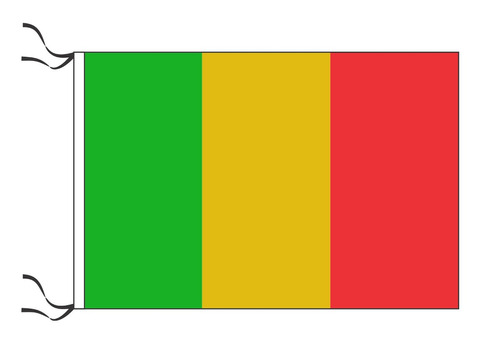 10 banderas de países 90 x 60 cm oficiales refuerzo y sogas
