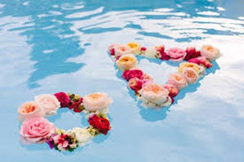 10 flôres flutuantes *piscina, banheira, centro de mesa