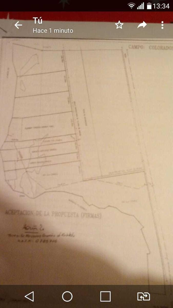 10 hectáreas en villa union - la rioja