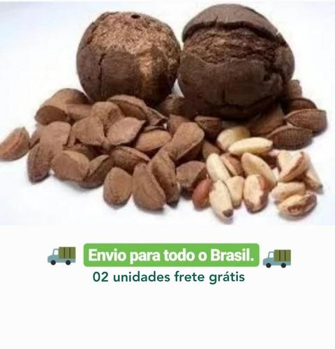 10 kg-castanha do pará..amazônia..c/casca safra 2020 +brinde