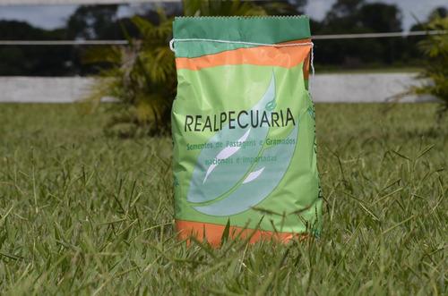 10 kg de sementes de grama batatais p/ gramados + 1 aspersor