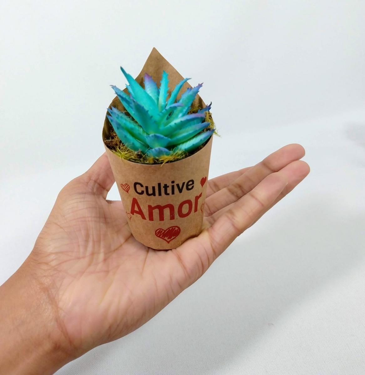 10 Mini Suculentas Artificiais Vasinhos Com Frases Motivacional Amor Ame Lembrancinhas Dia Das Mães Empresas Natal