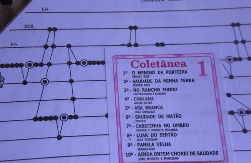 10 partituras coletânea nº01 para cítara mini harpa promoção