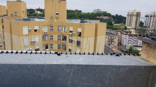 10 peças de espícula em aço inoxidável anti pombos a melhor