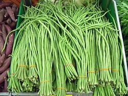 10 semillas de chaucha de metro