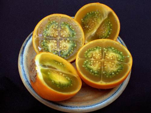 10 semillas de solanum quitoense - naranjilla codigo 999