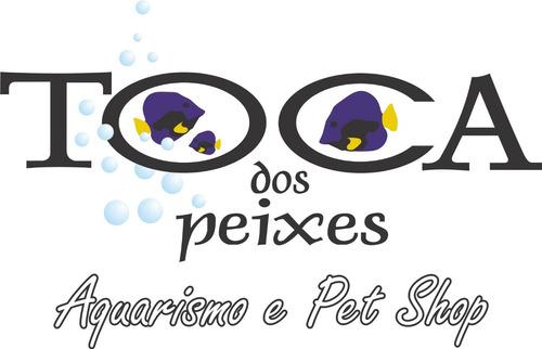 10 x pedigree sachê cães filhotes sabor frango ao molho 100g