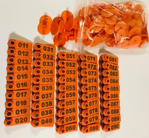 100 aretes cerdo borrego ganado enumerado naranja ganado