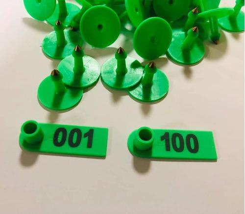 100 aretes cerdo borrego ganado enumerado verdes ganado