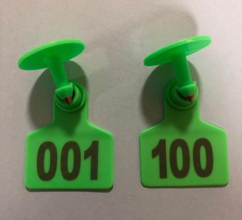 100 aretes para cerdo cabra ganado enumerados láser verde
