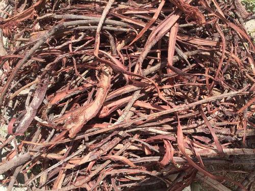 100 gramas pó da casca da raiz de jurema preta