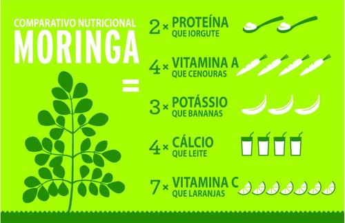 100% moringa oleifera - 120 cápsulas