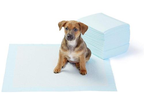 100 sabanillas pañales 33x45cm mascotas perro + regalo
